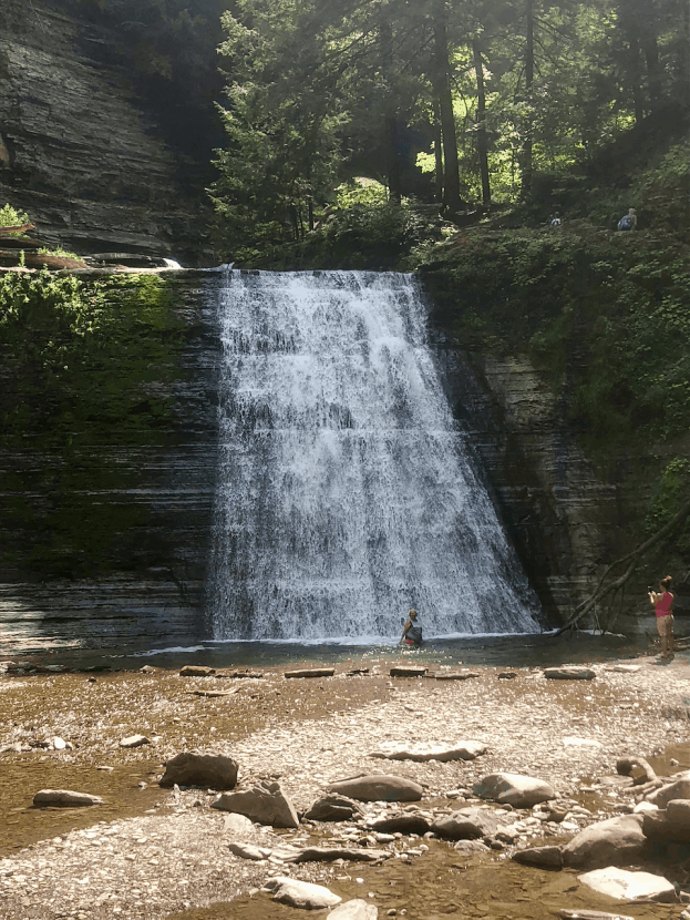 Explore Your Own Backyard: Day Trips in Western New York   Healthy Helper Two worthwhile day trips for you to take with your family in the Western New York area. Get up, get outside, and explore your own backyard!