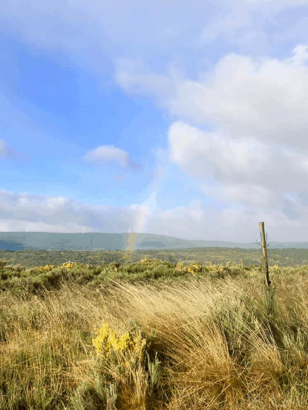 #HealthyHelperTravels: My Camino Experience   A recap of my experience trekking across Spain on the Camino Frances, the French Way, to Santiago de Compostela! Thoughts, feelings, and takeaways from the journey.